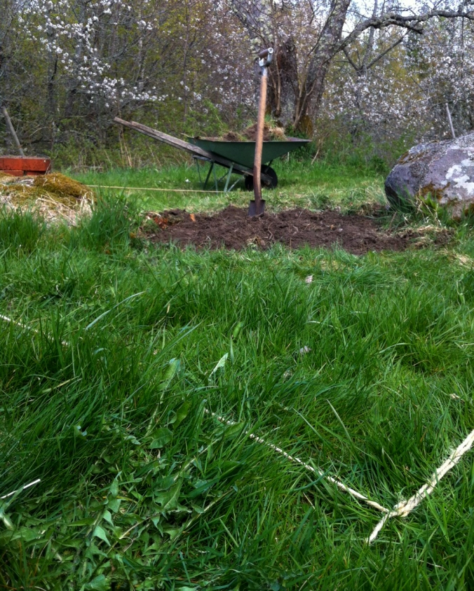 TrädgårdslandGräva